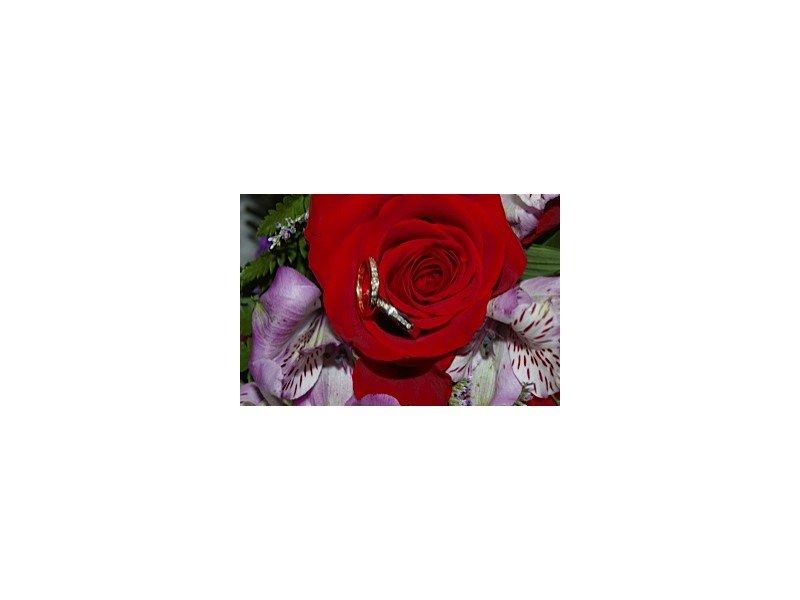 Wedding rings inside a red rose