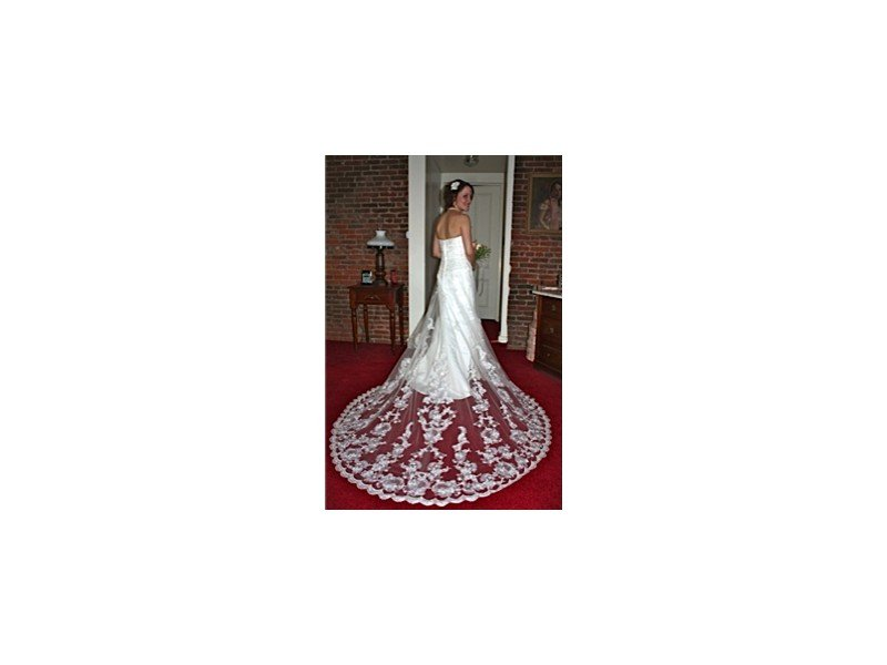 Rear view of bride in her white dress and lace train