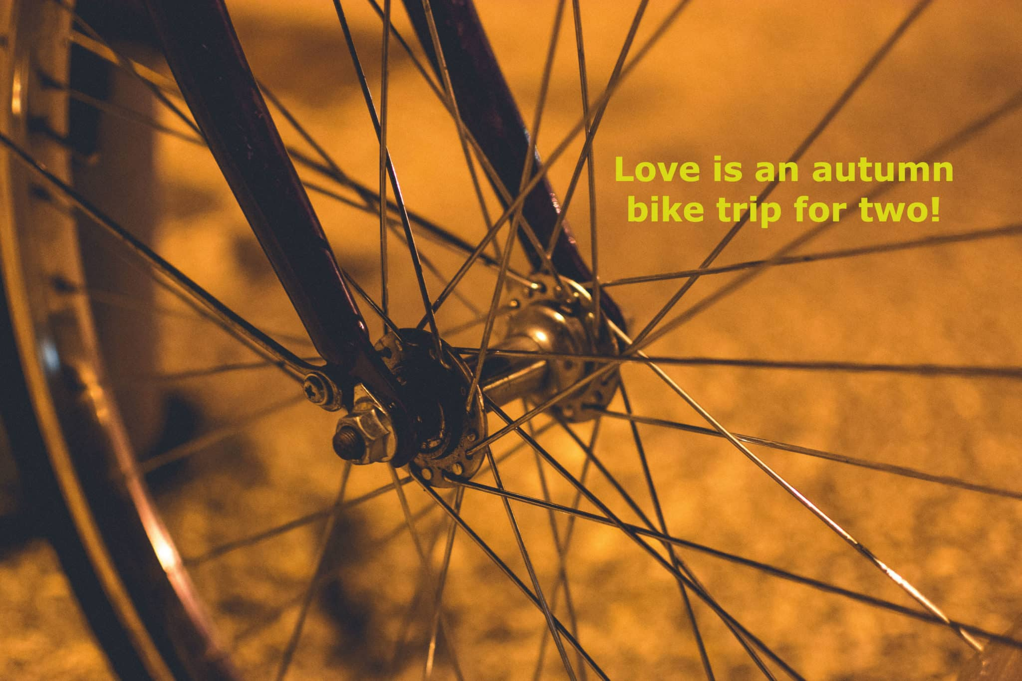 Close up shot of bicycle spokes with title: Love is an autumn bike trip for two!